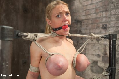Photo number 15 from Bent shot for Hogtied on Kink.com. Featuring Dee Williams in hardcore BDSM & Fetish porn.