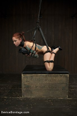 Photo number 7 from Tricia Oaks - Unbreakable shot for Device Bondage on Kink.com. Featuring Mz Berlin, Romona Vaine and Tricia Oaks in hardcore BDSM & Fetish porn.