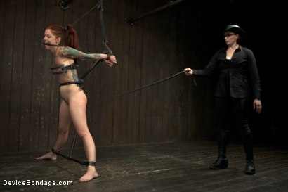 Photo number 11 from Tricia Oaks - Unbreakable shot for Device Bondage on Kink.com. Featuring Mz Berlin, Romona Vaine and Tricia Oaks in hardcore BDSM & Fetish porn.