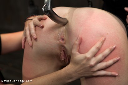 Photo number 3 from Tricia Oaks - Unbreakable shot for Device Bondage on Kink.com. Featuring Mz Berlin, Romona Vaine and Tricia Oaks in hardcore BDSM & Fetish porn.