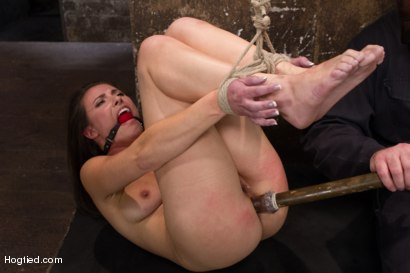 Photo number 14 from Sgt Major vs Casey Calvert shot for Hogtied on Kink.com. Featuring Sgt. Major and Casey Calvert in hardcore BDSM & Fetish porn.