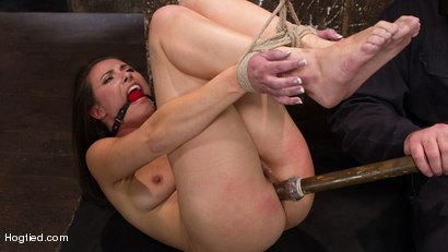 Sgt Major vs Casey Calvert