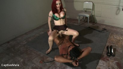 Photo number 6 from The Package shot for Captive Male on Kink.com. Featuring Mz Berlin and Lobo in hardcore BDSM & Fetish porn.