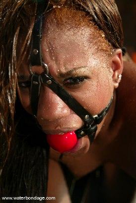 Photo number 5 from Sydnee Capri shot for Water Bondage on Kink.com. Featuring Sydnee Capri in hardcore BDSM & Fetish porn.