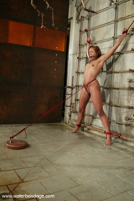 Photo number 11 from Sydnee Capri shot for Water Bondage on Kink.com. Featuring Sydnee Capri in hardcore BDSM & Fetish porn.