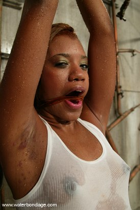 Photo number 1 from Sydnee Capri shot for Water Bondage on Kink.com. Featuring Sydnee Capri in hardcore BDSM & Fetish porn.
