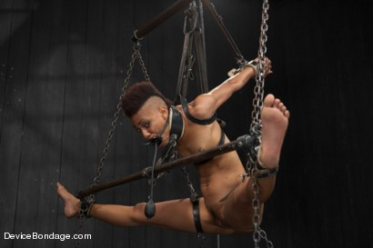 Photo number 15 from Defiled - Nikki Darling shot for Device Bondage on Kink.com. Featuring Nikki Darling in hardcore BDSM & Fetish porn.