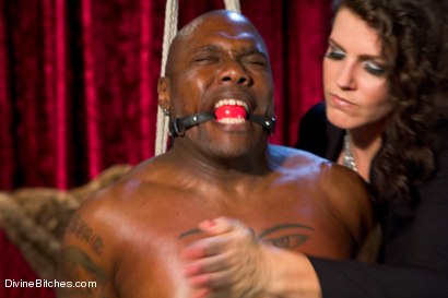 Photo number 2 from Bobbi Starr, why are you so damn sadistic!!?!?!?! shot for Divine Bitches on Kink.com. Featuring Bobbi Starr and Jack Hammer in hardcore BDSM & Fetish porn.