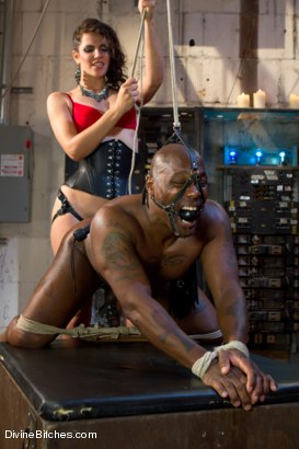 Photo number 13 from Bobbi Starr, why are you so damn sadistic!!?!?!?! shot for Divine Bitches on Kink.com. Featuring Bobbi Starr and Jack Hammer in hardcore BDSM & Fetish porn.