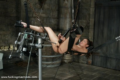 Photo number 12 from Isis Love and G-Force shot for Fucking Machines on Kink.com. Featuring Isis Love and G-Force in hardcore BDSM & Fetish porn.