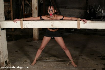 Photo number 3 from Isis Love shot for Water Bondage on Kink.com. Featuring Isis Love in hardcore BDSM & Fetish porn.