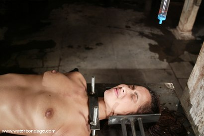 Photo number 9 from Isis Love shot for Water Bondage on Kink.com. Featuring Isis Love in hardcore BDSM & Fetish porn.