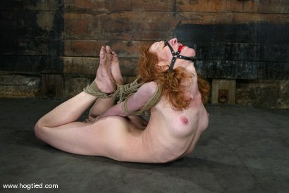 Photo number 3 from Sye Rena shot for Hogtied on Kink.com. Featuring Sye Rena in hardcore BDSM & Fetish porn.