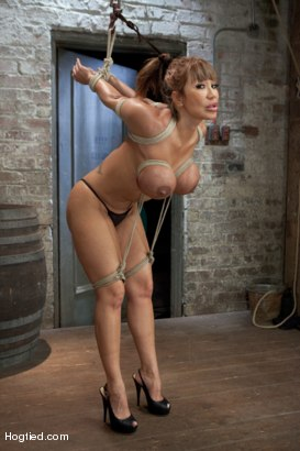 Photo number 1 from Ava Devine Wants It BAD shot for Hogtied on Kink.com. Featuring Ava Devine in hardcore BDSM & Fetish porn.