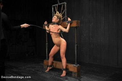 Photo number 10 from Sheena Shaw - Rough Rider shot for Device Bondage on Kink.com. Featuring Sheena Shaw in hardcore BDSM & Fetish porn.