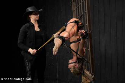 Photo number 16 from Sheena Shaw - Rough Rider shot for Device Bondage on Kink.com. Featuring Sheena Shaw in hardcore BDSM & Fetish porn.