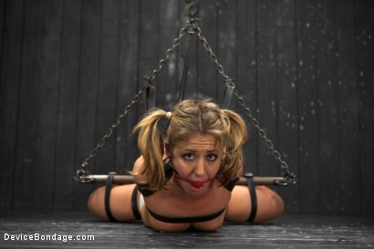 Photo number 1 from Sheena Shaw - Rough Rider shot for Device Bondage on Kink.com. Featuring Sheena Shaw in hardcore BDSM & Fetish porn.
