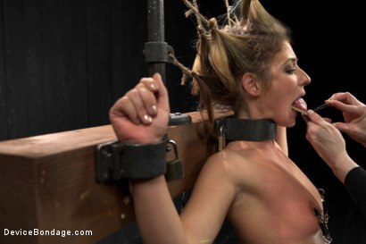 Photo number 11 from Sheena Shaw - Rough Rider shot for Device Bondage on Kink.com. Featuring Sheena Shaw in hardcore BDSM & Fetish porn.
