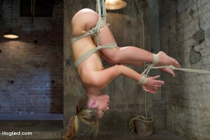 Photo number 15 from Blonde fuck slut squeals and begs to cum.  shot for Hogtied on Kink.com. Featuring Sheena Shaw in hardcore BDSM & Fetish porn.