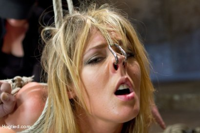 Photo number 4 from Blonde fuck slut squeals and begs to cum.  shot for Hogtied on Kink.com. Featuring Sheena Shaw in hardcore BDSM & Fetish porn.