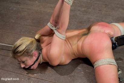 Photo number 14 from Blonde fuck slut squeals and begs to cum.  shot for Hogtied on Kink.com. Featuring Sheena Shaw in hardcore BDSM & Fetish porn.