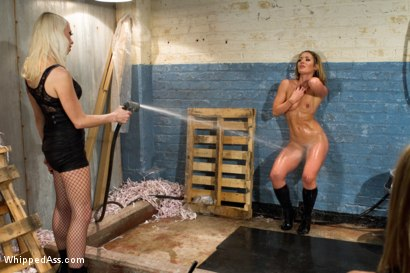 Photo number 13 from The Audition shot for Whipped Ass on Kink.com. Featuring Sheena Shaw, Lorelei Lee and Leya Falcon in hardcore BDSM & Fetish porn.