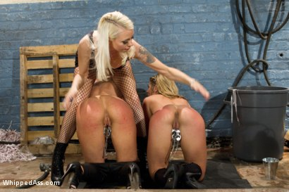 Photo number 5 from The Audition shot for Whipped Ass on Kink.com. Featuring Sheena Shaw, Lorelei Lee and Leya Falcon in hardcore BDSM & Fetish porn.
