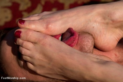 Photo number 6 from Kiss My Feet Deadly shot for Foot Worship on Kink.com. Featuring Maitresse Madeline Marlowe  and Christian Wilde in hardcore BDSM & Fetish porn.