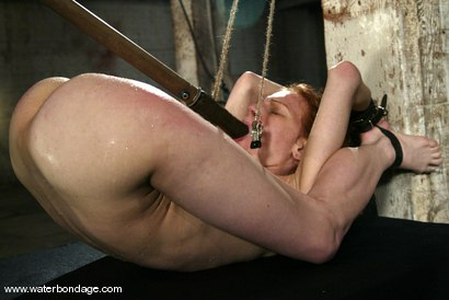 Photo number 2 from Sye Rena shot for Water Bondage on Kink.com. Featuring Sye Rena in hardcore BDSM & Fetish porn.