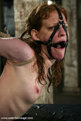 Photo number 4 from Sye Rena shot for Water Bondage on Kink.com. Featuring Sye Rena in hardcore BDSM & Fetish porn.