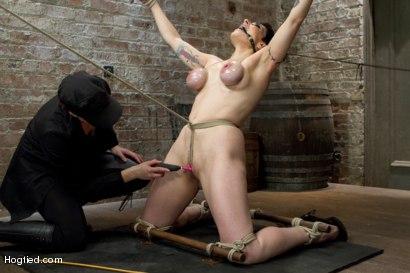Photo number 3 from Annika Returns to HogTied shot for Hogtied on Kink.com. Featuring Annika in hardcore BDSM & Fetish porn.