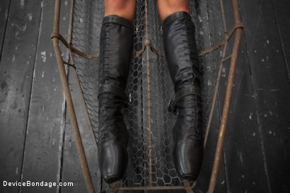 Photo number 7 from Tough As Nails - Cassandra Nix shot for devicebondage on Kink.com. Featuring Cassandra Nix in hardcore BDSM & Fetish porn.