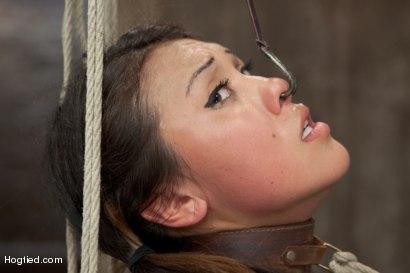Photo number 4 from Asian Heart Breaker Jayden Lee Defiled shot for Hogtied on Kink.com. Featuring Jayden Lee in hardcore BDSM & Fetish porn.
