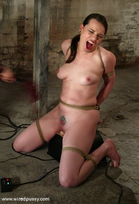 Photo number 14 from COLLECTION PART 5 shot for Wired Pussy on Kink.com. Featuring Dana DeArmond, Jenni Lee, Lorelei Lee and Jade Marxxx in hardcore BDSM & Fetish porn.