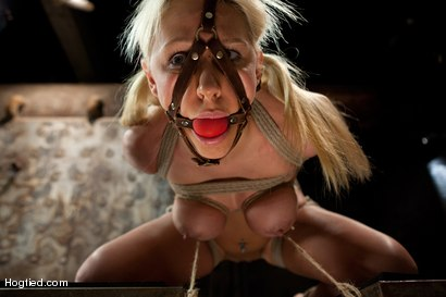 Photo number 10 from Katie Summers Tormented Cunt shot for Hogtied on Kink.com. Featuring Katie Summers in hardcore BDSM & Fetish porn.