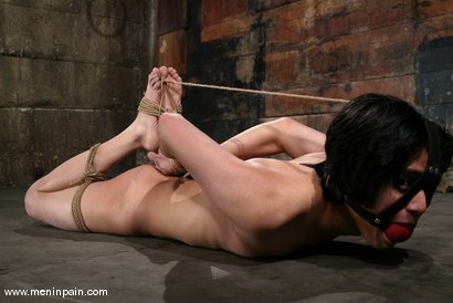 Photo number 13 from Men In Pain Bondage Tutorial<br>Part 1: the HOGTIE shot for Men In Pain on Kink.com. Featuring Scott Lee in hardcore BDSM & Fetish porn.