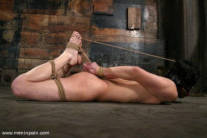 Photo number 14 from Men In Pain Bondage Tutorial<br>Part 1: the HOGTIE shot for Men In Pain on Kink.com. Featuring Scott Lee in hardcore BDSM & Fetish porn.