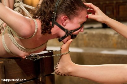Photo number 5 from Bonnie Day: Masochist Anal Slut shot for Whipped Ass on Kink.com. Featuring Maitresse Madeline Marlowe  and Bonnie Day in hardcore BDSM & Fetish porn.