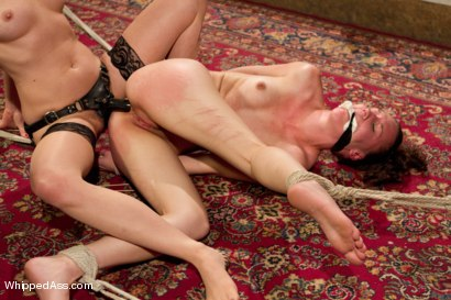 Photo number 10 from Bonnie Day: Masochist Anal Slut shot for Whipped Ass on Kink.com. Featuring Maitresse Madeline Marlowe  and Bonnie Day in hardcore BDSM & Fetish porn.