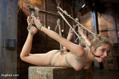 Photo number 6 from Welcome Lia Lor to HogTied shot for Hogtied on Kink.com. Featuring Lia Lor in hardcore BDSM & Fetish porn.
