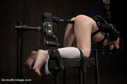 Photo number 9 from Pig shot for Device Bondage on Kink.com. Featuring AnnaBelle Lee in hardcore BDSM & Fetish porn.