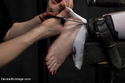 Photo number 10 from Pig shot for Device Bondage on Kink.com. Featuring AnnaBelle Lee in hardcore BDSM & Fetish porn.