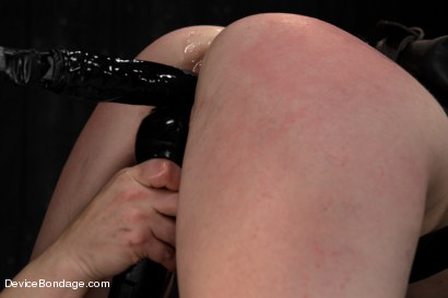 Photo number 11 from Pig shot for Device Bondage on Kink.com. Featuring AnnaBelle Lee in hardcore BDSM & Fetish porn.
