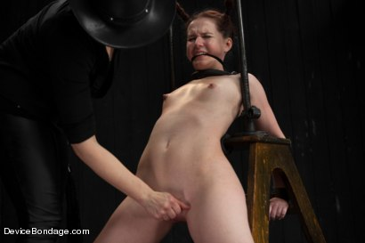 Photo number 5 from Pig shot for Device Bondage on Kink.com. Featuring AnnaBelle Lee in hardcore BDSM & Fetish porn.