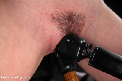 Photo number 6 from Pig shot for Device Bondage on Kink.com. Featuring AnnaBelle Lee in hardcore BDSM & Fetish porn.