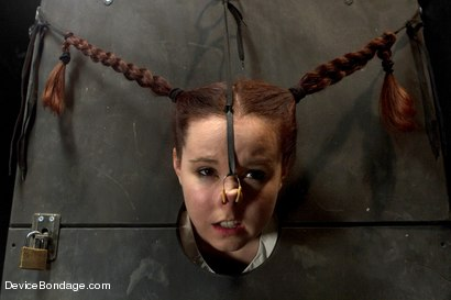 Photo number 16 from Pig shot for Device Bondage on Kink.com. Featuring AnnaBelle Lee in hardcore BDSM & Fetish porn.