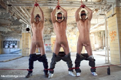 Photo number 5 from World Premier of the Visconti Triplets in Bondage  shot for Men On Edge on Kink.com. Featuring Jason Visconti, Jimmy Visconti and Joey Visconti in hardcore BDSM & Fetish porn.