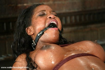 Photo number 6 from Sgt. Major and Lori Alexia shot for Water Bondage on Kink.com. Featuring Sgt. Major and Lori Alexia in hardcore BDSM & Fetish porn.