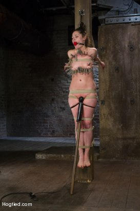 Photo number 7 from Charlotte Vale - Girl Next Door Overwhelmed with Orgasms shot for Hogtied on Kink.com. Featuring Charlotte Vale in hardcore BDSM & Fetish porn.