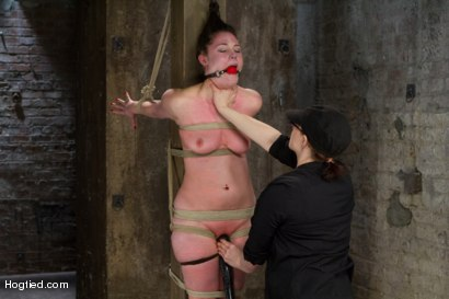 Photo number 6 from Charlotte Vale - Girl Next Door Overwhelmed with Orgasms shot for Hogtied on Kink.com. Featuring Charlotte Vale in hardcore BDSM & Fetish porn.